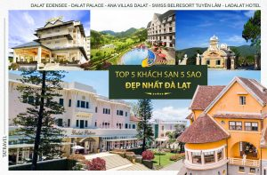 Top 5 Khách Sạn 5 Sao Đẹp Nhất Đà Lạt không thể bỏ qua